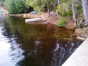 lot 8 cannonball lake, Irondale Ontario, Canada Located on Wiley Lake