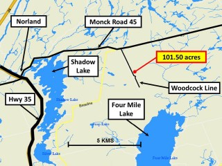 pt lot 15 woodcock line, City of Kawartha Lakes Ontario, Canada